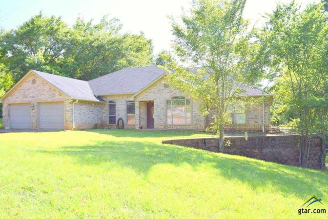 10734 County Road 1261, Flint, TX 75762 (MLS #10110701) :: RE/MAX Impact