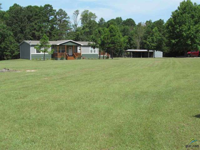 4825 Cr 4560, Winnsboro, TX 75494 (MLS #10110746) :: RE/MAX Impact