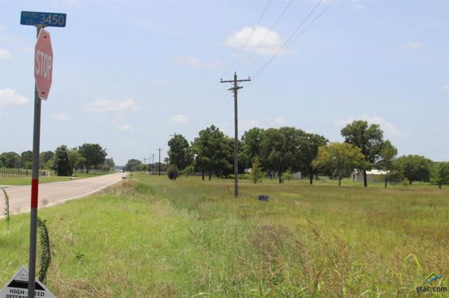 151 Rscr 3450, Emory, TX 75440 (MLS #10110747) :: The Wampler Wolf Team