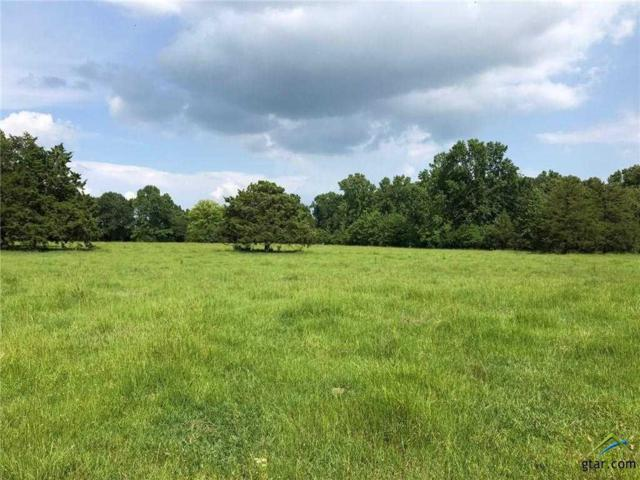 TBD County Road 2324, Como, TX 75431 (MLS #10110847) :: The Wampler Wolf Team