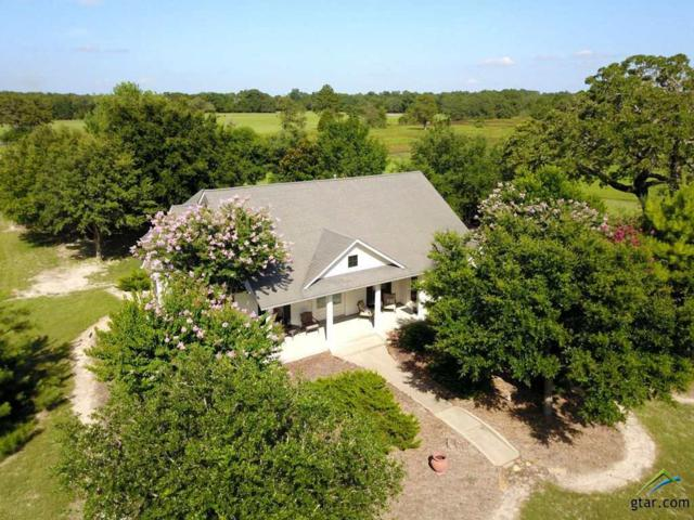 3431 Acr 2402, Tennessee Colony, TX 75861 (MLS #10110852) :: RE/MAX Impact