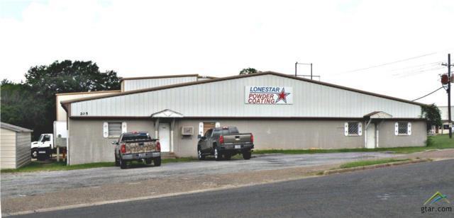 205 Old Elkhart Road, Palestine, TX 75801 (MLS #10110911) :: RE/MAX Professionals - The Burks Team
