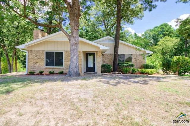 20519 Clear Water Circle, Flint, TX 75762 (MLS #10110956) :: The Wampler Wolf Team