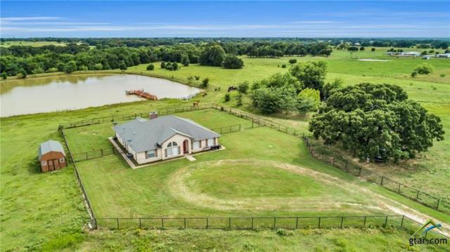 1159 Vz County Road 2703, Mabank, TX 75147 (MLS #10111093) :: RE/MAX Professionals - The Burks Team
