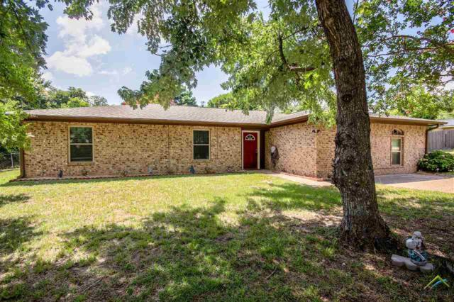17554 Kristopher Cir, Whitehouse, TX 75791 (MLS #10111111) :: The Wampler Wolf Team