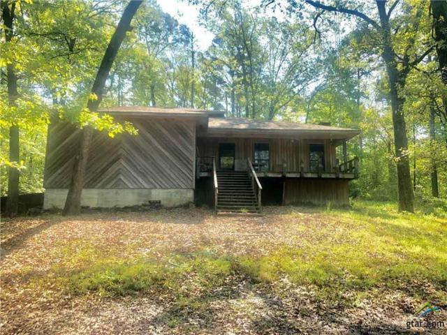 474 County Road 2601, Pittsburg, TX 75686 (MLS #10111140) :: The Wampler Wolf Team