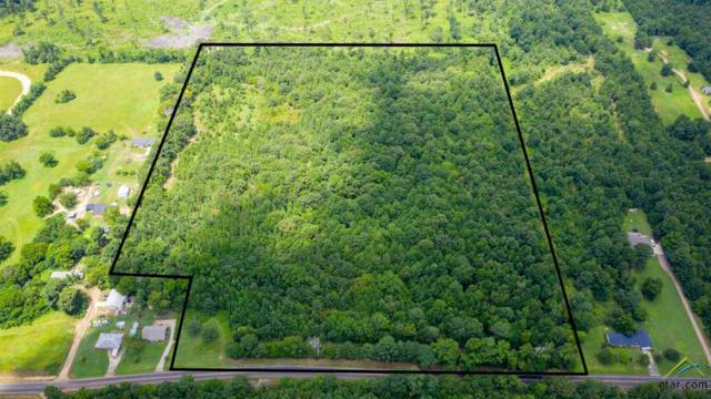 TBD N Hwy 144, Daingerfield, TX 75638 (MLS #10111167) :: The Wampler Wolf Team