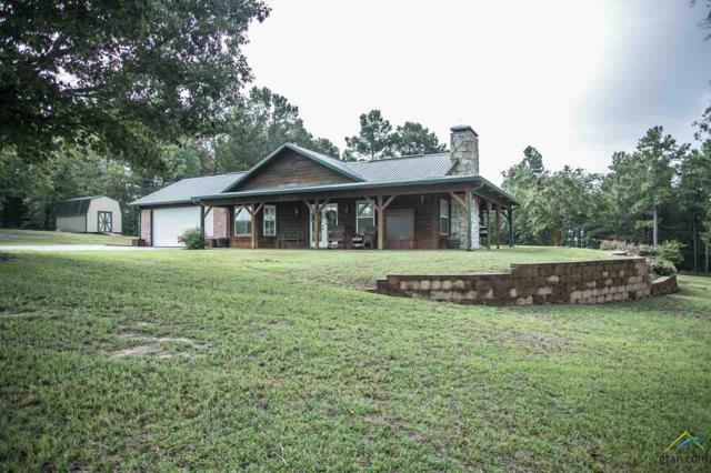 4085 Cr 4701, Troup, TX 75789 (MLS #10111168) :: The Wampler Wolf Team