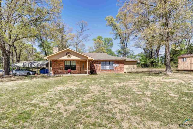 17170 County Road 46, Tyler, TX 75704 (MLS #10111237) :: RE/MAX Impact