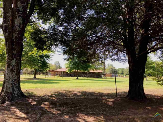 2572 Fm 2088, Quitman, TX 75783 (MLS #10111315) :: The Wampler Wolf Team
