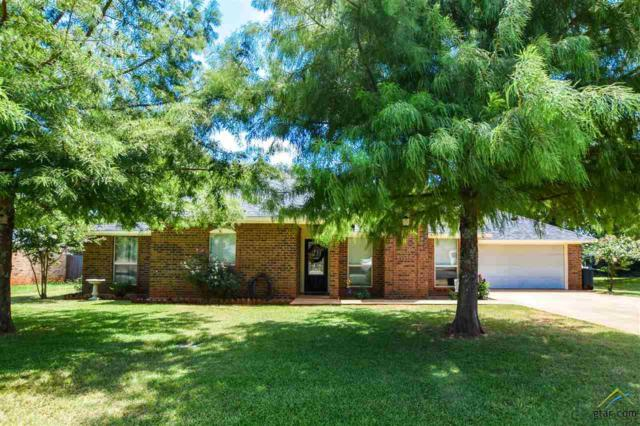 701 Pheasant Lane, Whitehouse, TX 75791 (MLS #10111465) :: RE/MAX Impact