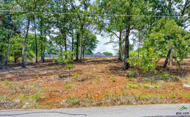 .5 acre LOT Centennial & Skidmore, Tyler, TX 75703 (MLS #10111635) :: Griffin Real Estate Group