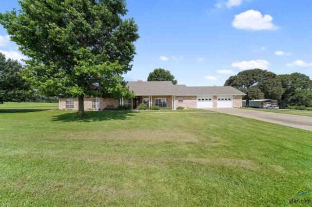 11488 St. Hwy 155, Frankston, TX 75763 (MLS #10112074) :: The Wampler Wolf Team