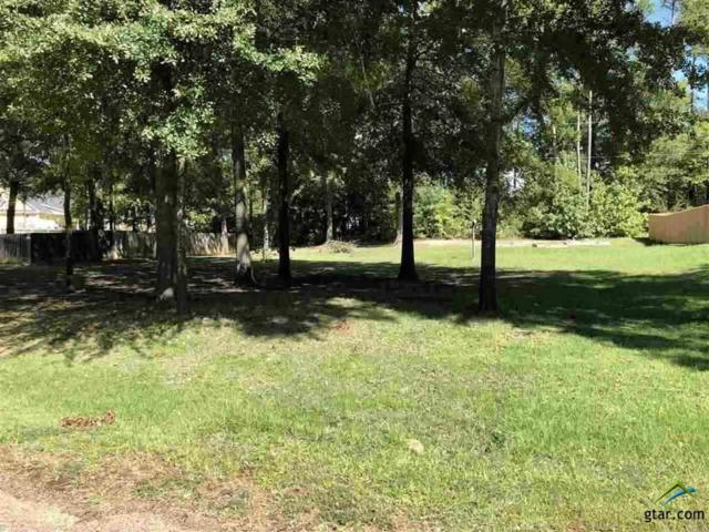 TBD Quail Dr, Gilmer, TX 75645 (MLS #10112104) :: The Wampler Wolf Team