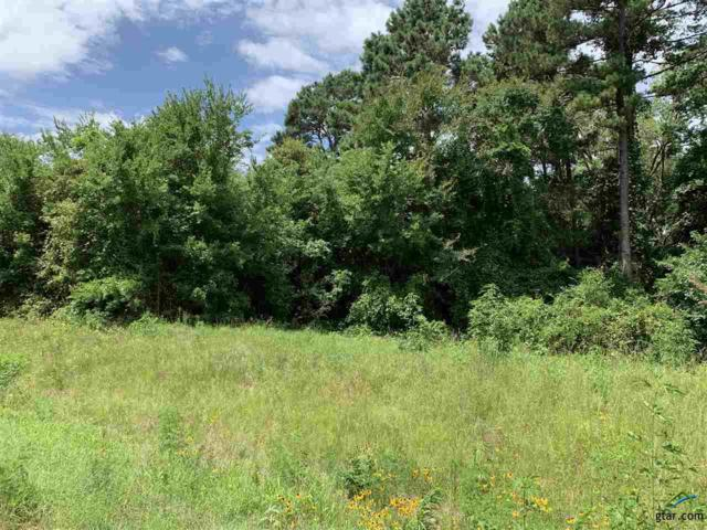 TBD 59..9580ac S Fm 1002, Big Sandy, TX 75755 (MLS #10112153) :: RE/MAX Impact