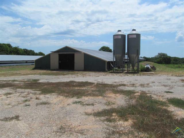1476 Farm Road 3105, Pickton, TX 75471 (MLS #10112155) :: RE/MAX Professionals - The Burks Team