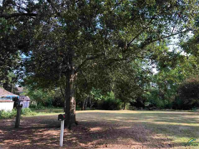 105 W Groves St., Big Sandy, TX 75755 (MLS #10112249) :: RE/MAX Impact
