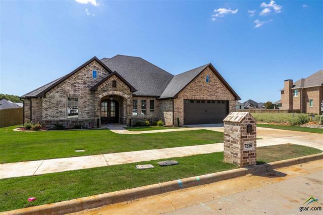 7339 Shoal Creek Ct., Tyler, TX 75703 (MLS #10112265) :: RE/MAX Professionals - The Burks Team