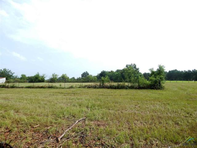 TBD Oak Street, Troup, TX 75789 (MLS #10112275) :: RE/MAX Impact