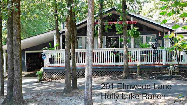 201 Elmwood Lane, Holly Lake Ranch, TX 75765 (MLS #10112291) :: RE/MAX Professionals - The Burks Team
