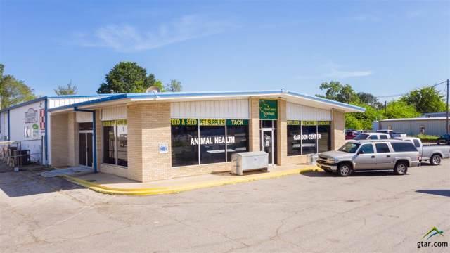 409 S Greer, Pittsburg, TX 75686 (MLS #10113531) :: RE/MAX Professionals - The Burks Team