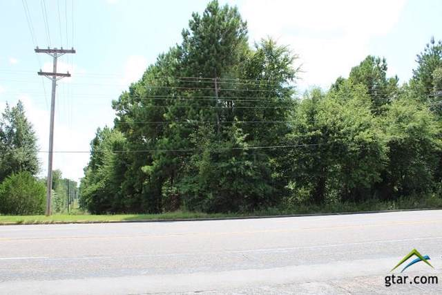TBD Hwy 110, Troup, TX 75789 (MLS #10113564) :: The Wampler Wolf Team