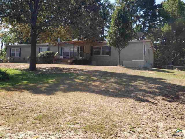 17739 County Road 431, Lindale, TX 75771 (MLS #10113588) :: The Wampler Wolf Team