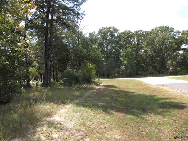 Lot 128 Twin Lakes Trail, Larue, TX 75770 (MLS #10113605) :: The Wampler Wolf Team