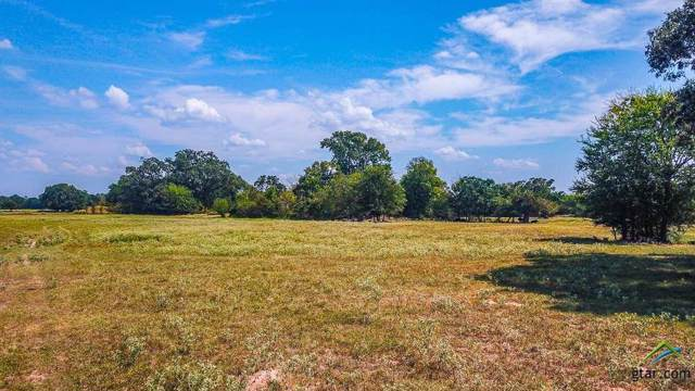 TBD Cr 452, Lindale, TX 75771 (MLS #10113635) :: The Wampler Wolf Team