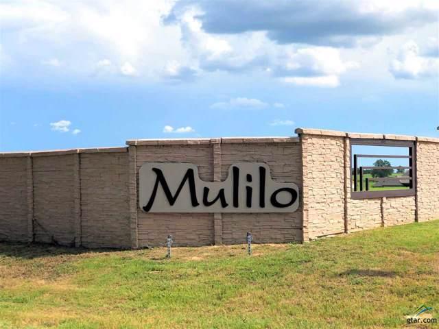 135 Bush Buck Way, Bullard, TX 75757 (MLS #10113661) :: RE/MAX Professionals - The Burks Team