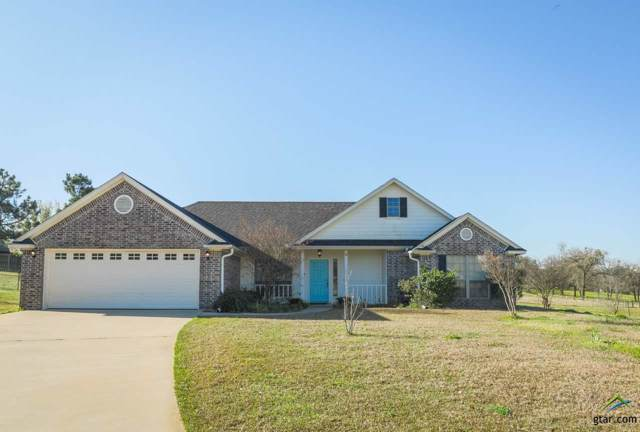 16041 Hickory Hills Drive, Lindale, TX 75771 (MLS #10113696) :: The Wampler Wolf Team
