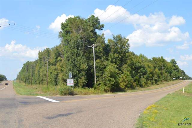 32.87 W Highway 154, Quitman, TX 75783 (MLS #10113724) :: The Wampler Wolf Team
