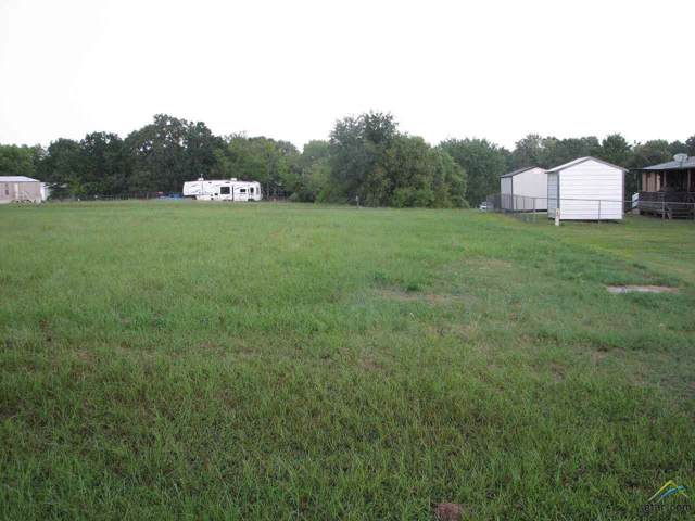000 Holiday Village Drive, Quitman, TX 75783 (MLS #10113751) :: The Wampler Wolf Team
