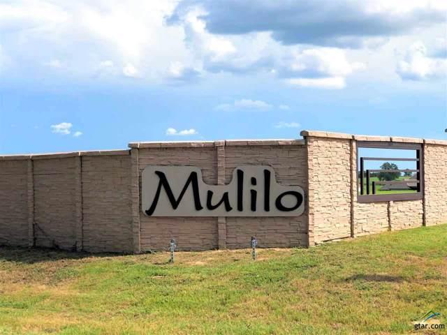 124 Bush Buck Way, Bullard, TX 75757 (MLS #10113780) :: RE/MAX Professionals - The Burks Team
