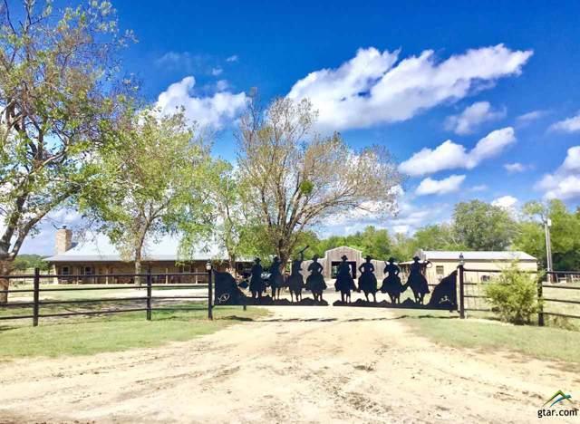 1861 Cr 4200, Winnsboro, TX 75494 (MLS #10113875) :: RE/MAX Professionals - The Burks Team