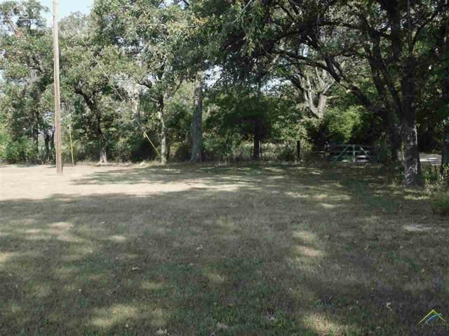 2706 Van Zandt County Road 1316, Grand Saline, TX 75140 (MLS #10113972) :: RE/MAX Professionals - The Burks Team