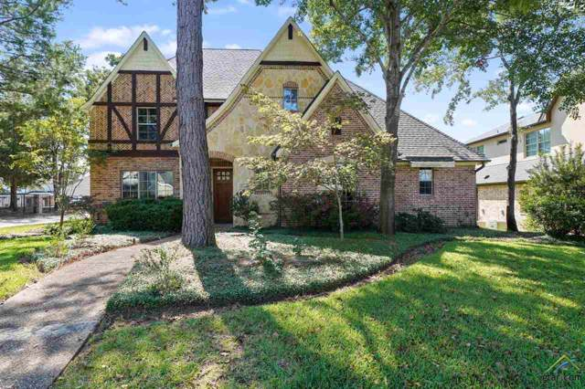 4546 Triggs Trace, Tyler, TX 75709 (MLS #10114308) :: The Wampler Wolf Team