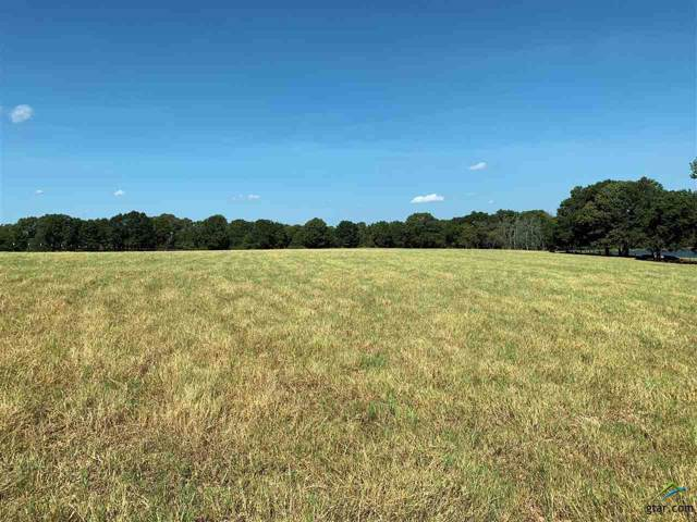 6283 Fm 1616, Athens, TX 75751 (MLS #10114455) :: The Wampler Wolf Team