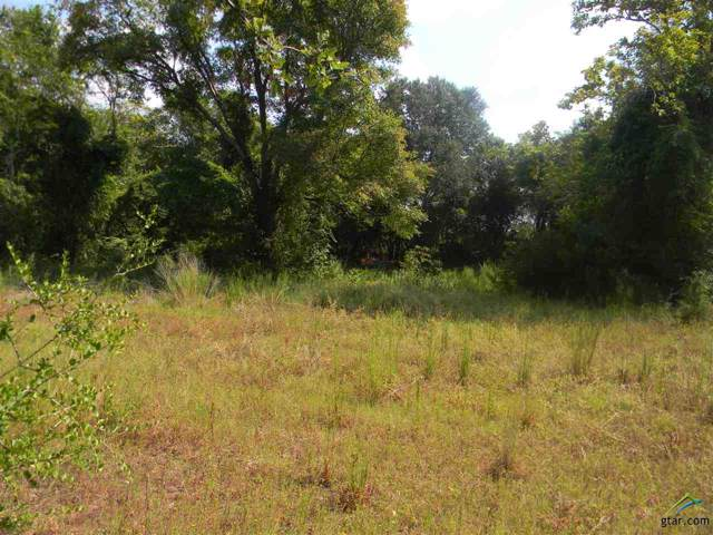 2101 Patterson, Athens, TX 75751 (MLS #10114469) :: The Wampler Wolf Team