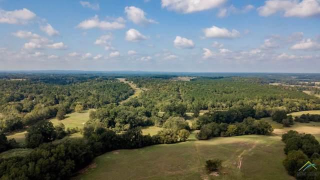TBD Cr 225 & Cr 436 135.32 Acres, Laneville, TX 75667 (MLS #10114544) :: RE/MAX Professionals - The Burks Team