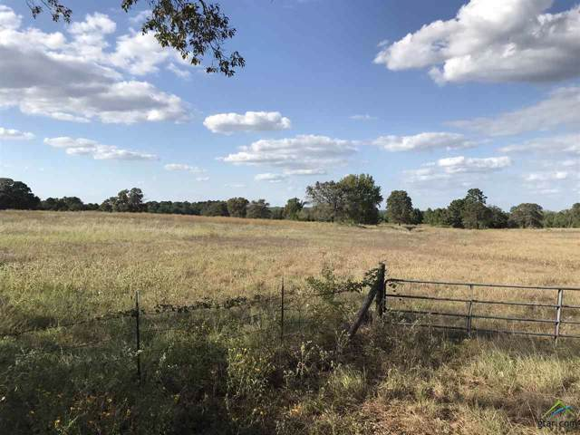 TBD Acr 335, Neches, TX 75779 (MLS #10114574) :: The Wampler Wolf Team