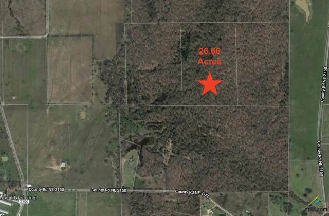 00 Cr 2150, Mt Vernon, TX 75457 (MLS #10114795) :: The Wampler Wolf Team