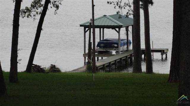 23001 Lakeside, Flint, TX 75762 (MLS #10114849) :: RE/MAX Professionals - The Burks Team