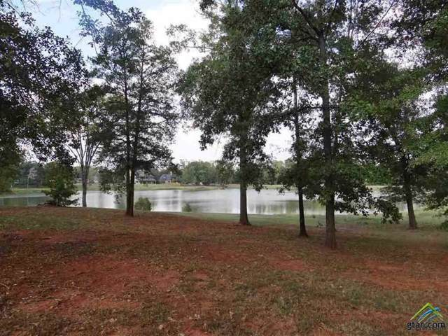 113 Lake Lou Ella Drive, Bullard, TX 75757 (MLS #10114965) :: RE/MAX Professionals - The Burks Team