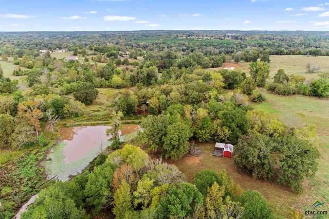 10241 Seven Hills Road, Tyler, TX 75708 (MLS #10115160) :: The Wampler Wolf Team
