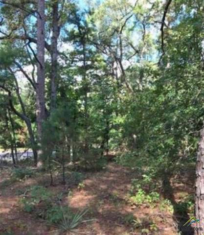 Lot 67 County Road 3419, Hawkins, TX 75765 (MLS #10115173) :: The Wampler Wolf Team