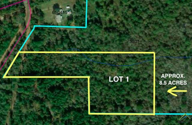 TBD Red Maple Lt1, Gilmer, TX 75644 (MLS #10115259) :: The Wampler Wolf Team