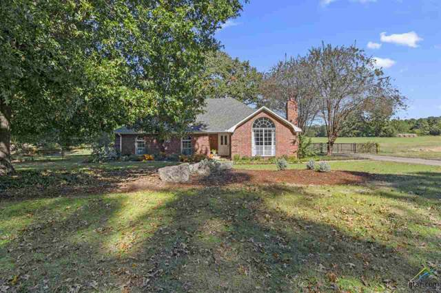 14880 Seven League Rd., Tyler, TX 75703 (MLS #10115363) :: The Wampler Wolf Team