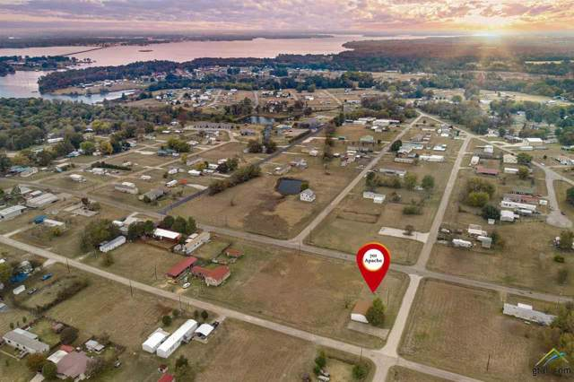 701 Apache, Quitman, TX 75783 (MLS #10115484) :: The Wampler Wolf Team
