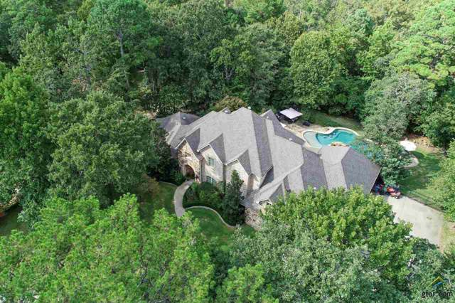 2015 Stonegate Valley Drive, Tyler, TX 75703 (MLS #10115576) :: RE/MAX Impact